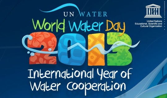 2013  United Nations International Year of Water
