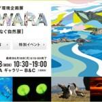 新宿に大自然・小笠原がきてるんだよ、6/18(月)までだよ、急いで!