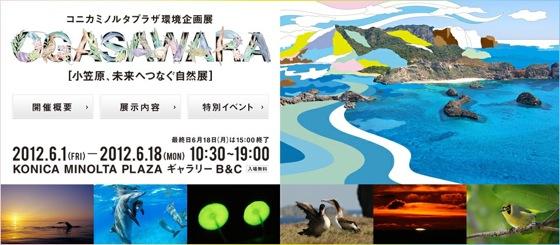 コニカミノルタプラザ環境企画展  OGASAWARA ~小笠原 未来へつなぐ自然展~ | コニカミノルタ