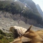 Flying-eagle-point-of-view.jpg