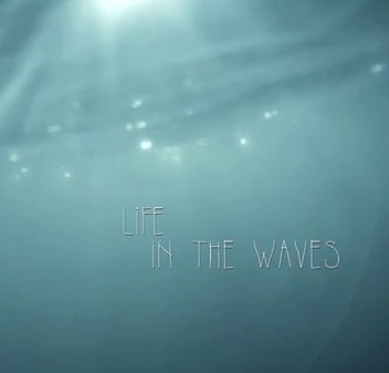 Life in the Waves  YouTube